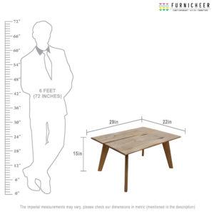 5.COFFEE TABLE SKU TBNW2915